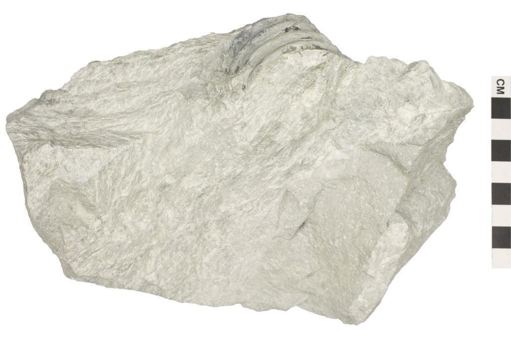 известняк мрамор картинки установленный